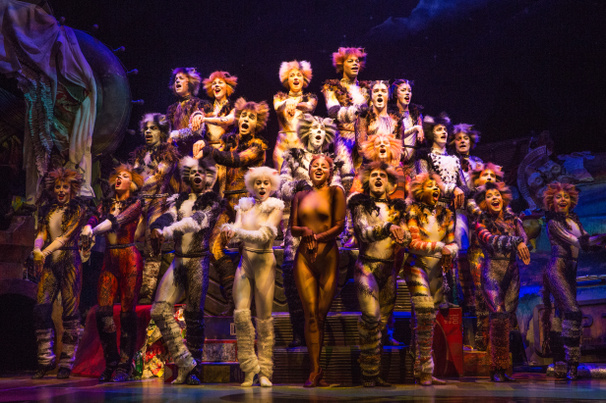 Put Those Paws Up! Here's a First Look at the Broadway Revival of Cats