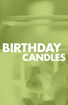 Birthday Candles American Airlines Theatre NYC Show Poster