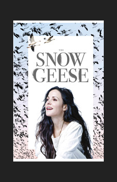 The Snow Geese, Samuel J Friedman Theatre, NYC Show Poster