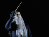 Edward James Hyland as Dumbledore in Harry Potter and the Cursed Child.