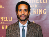 Stage and screen star André Holland hits the red carpet.