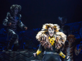 Tyler Hanes as Rum Tum Tugger in Broadway's Cats
