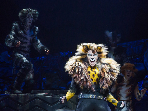 Invitation to the Jellicle Ball! Tickets Now on Sale for Andrew Lloyd Webber's Iconic Musical Cats in Cincinnati