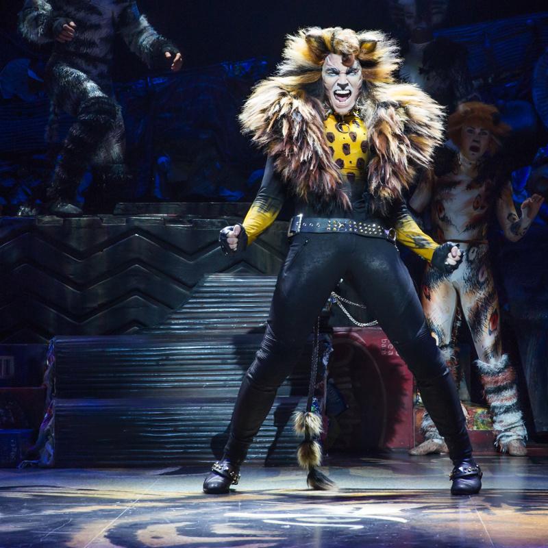 The Memory Fades Cats Revival Sets Broadway Closing Date Broadway Buzz Broadway Com