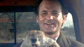 In Full Punxsutawney Spirit, Bill Murray Reappears at Groundhog Day on Broadway