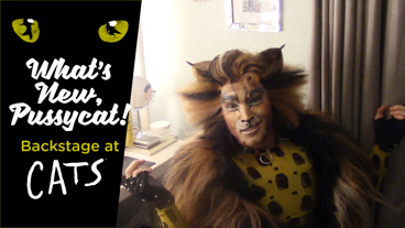 What's New, Pussycat? Backstage at Cats with Tyler Hanes: The Long Goodbye